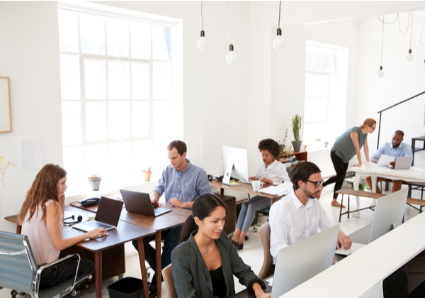 Busy office employees working on separate computers