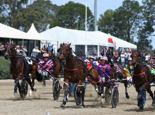 Harness racing in Club Menangle